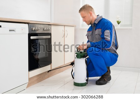 Young Man In Workwear Spraying Pesticide In Kitchen Room - stock photo