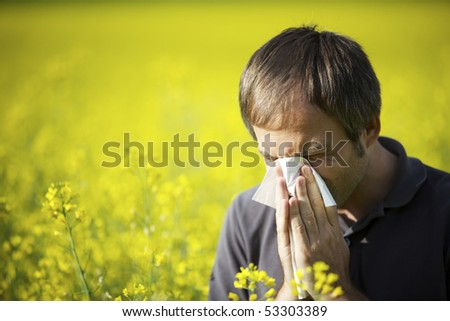 Young man in yellow canola field blowing his nose and suffering from hay fever. - stock photo