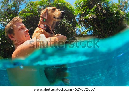 Family pet stock images royalty free images vectors shutterstock for How to train your dog to swim in the pool
