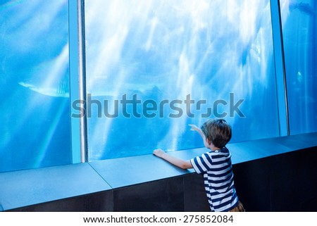 Young man pointing a shark with his finger at the aquarium - stock photo