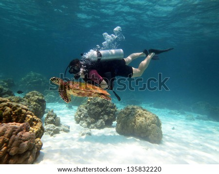Young Man Scuba Diver between Water Surface near a turtle