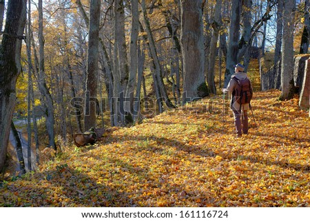 Young man tourist walking in the autumn forest.