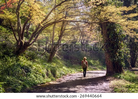 Young man with a rucksack going down by the beatifull forest pathway - stock photo