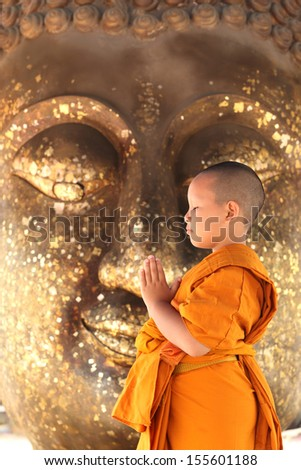 young monk in Thailand  - stock photo