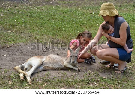 Young mother with her little girl (age 04) and infant baby petting an Eastern grey kangaroo female in Gold Coast Queensland, Australia - stock photo