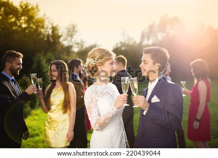 Young newlyweds and wedding guests clinking glasses at wedding reception outside - stock photo