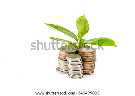 Young plant growing from coins