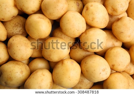 Young potatoes close up