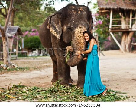 elephant hair stock images royaltyfree images amp vectors
