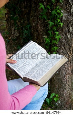 Young reading the Bible in nature - stock photo