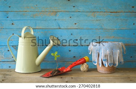 Young seedling and gardening utensils, free copy space - stock photo