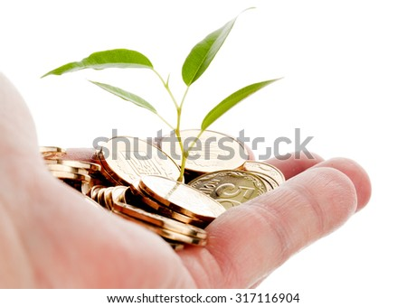Young sprout from a pile of coins in hand. Concept for investments. - stock photo