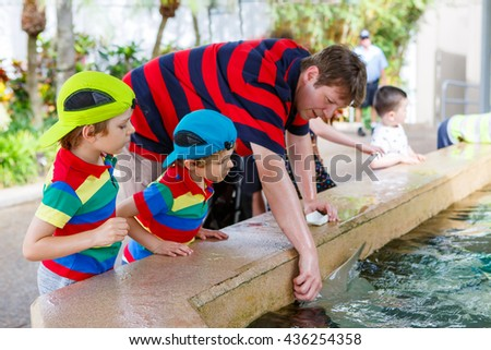 Young teacher and two little kid boys feeding rays in a recreation area on a school trip. Man and preschool children having fun with observing fishes.