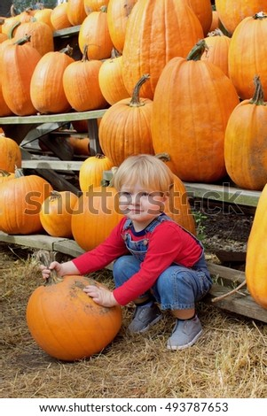 young toddler boy in overalls picking pumpkins at farm