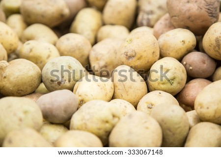 Young unpeeled potatoes in a store for sale - stock photo