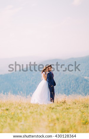Young wedding couple posing on sunny field with distant forest hills as background. Bride gently holding shoulders of groom - stock photo