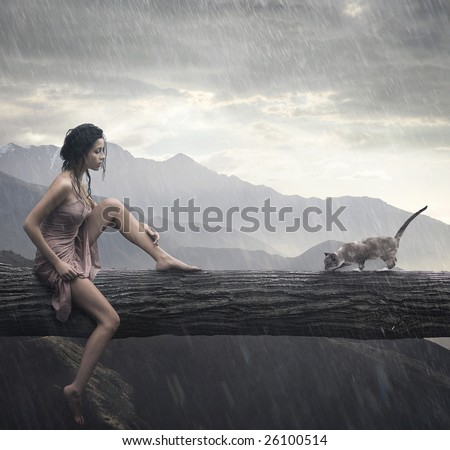 Young woman and cat on a trunk - stock photo