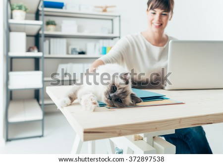 Young woman at home working at desk and cuddling her lovely cat, pets and lifestyle concept - stock photo