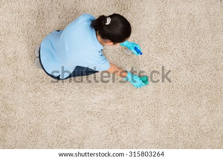 Young Woman Cleaning Carpet With Detergent Spray Bottle And Sponge - stock photo