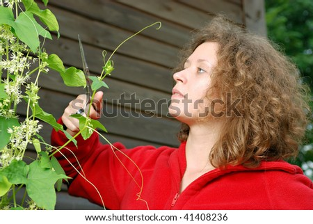 Young woman cutting climber plant with scissors - stock photo