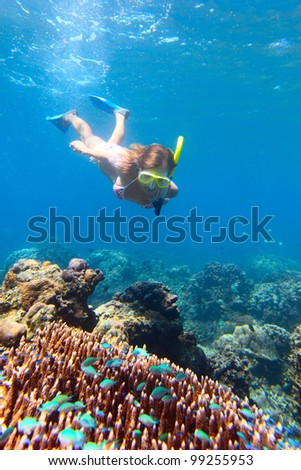 Young woman diving on a breath hold and fining over coral reef in blue transparent sea