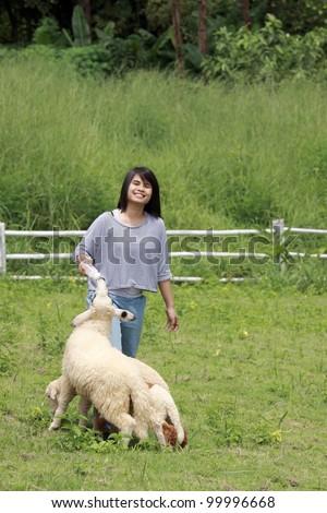 Young woman feeding milk to sheep - stock photo