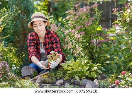 young woman gardener planting flowers in the garden people gardening planting of flowers