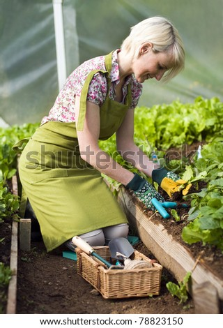 Young woman gardening in glasshouse close up - stock photo