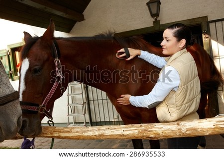Young woman grooming and caressing brown horse outdoors.