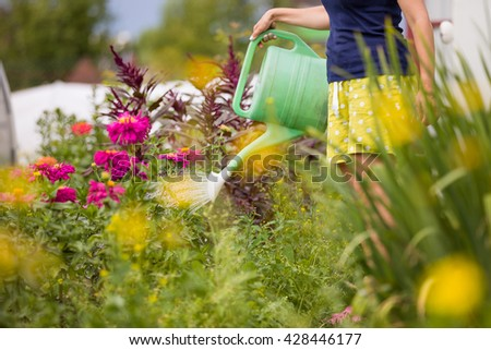 Young woman growing plants and flowers in the garden at summertime. Gardening girl watering flowers with green watering can on a sunny day.