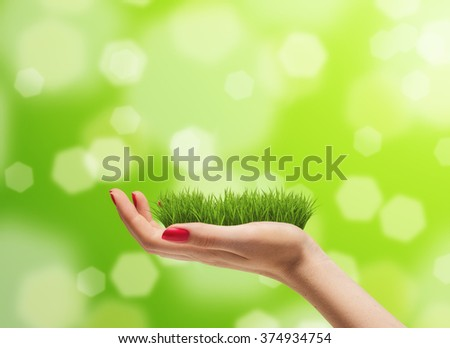 Young woman hand with fresh green grass on it. Bright bokeh background. Concern for the environment concept - stock photo