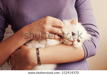 Young woman holding a white kitten - stock photo