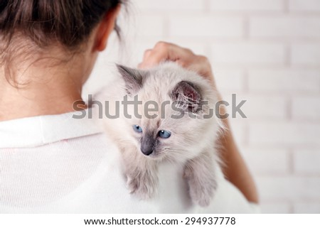 Young woman holding cat on light wall background - stock photo