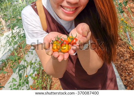 young woman holding cherry tomatoes in hands just picked with dirty hands and smily face at agriculture farm feeling very freshness - stock photo