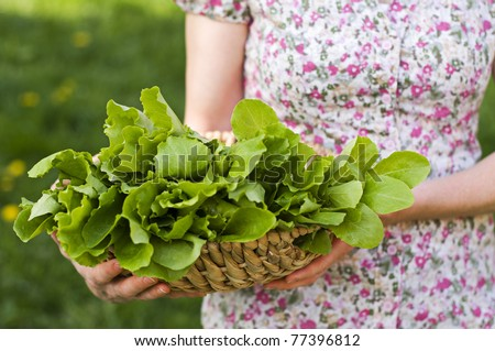 Young woman holding green salad outdoor close up