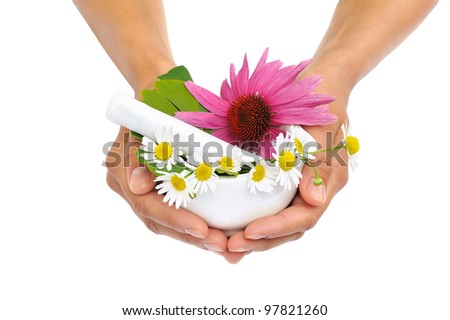 Young  woman holding mortar with herbs, Echinacea, ginkgo, chamomile