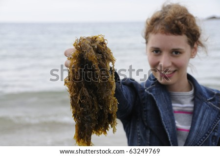 Young woman holding seaweed at the coast of brittany - stock photo