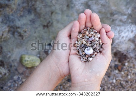 Young woman holds pile of seashells in her palms.