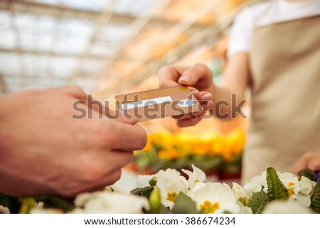 Young woman in apron is taking a credit card while standing in orangery. Man buying a plant with credit card, close-up - stock photo