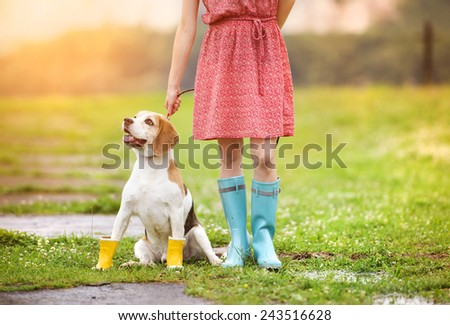 Young woman in dress and turquoise wellies walk her beagle dog in a park - stock photo