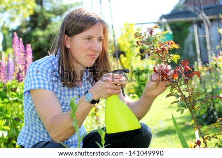 Young woman in garden sprays roses - stock photo