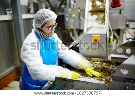 Young woman in uniform working on seaweed processing machine in food factory
