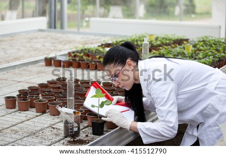 Young woman in white coat testing sprouts in flower pots in greenhouse