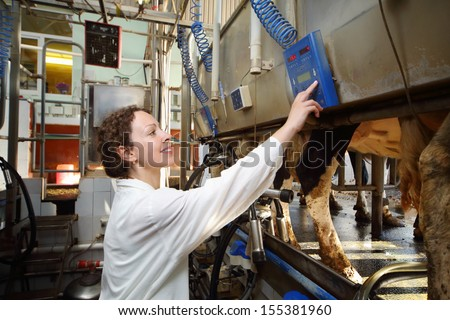 Young woman in white robe operates machine for milking of cows in big farm. - stock photo