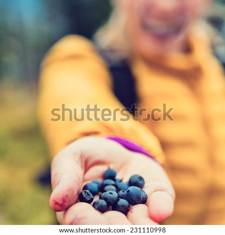 Young woman picking and hand giving blueberries in autumn fall or winter forest. Hiking and healthy lifestyle outdoors active in nature, handful blueberry food, background concept - stock photo