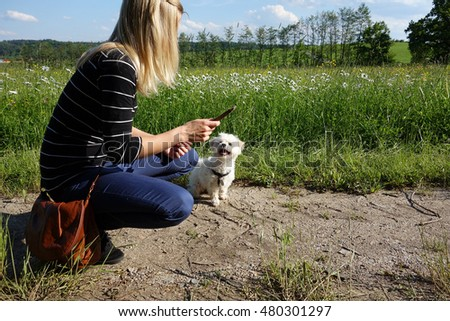 Young woman playing with her dog in nature with stick