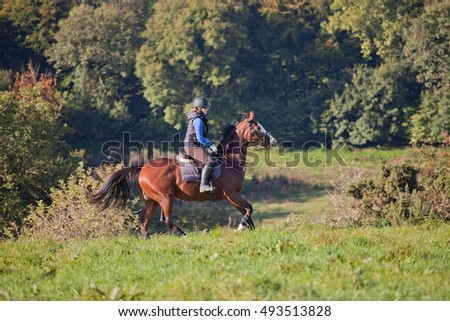 Young woman riding a horse in an open field woodland in the background