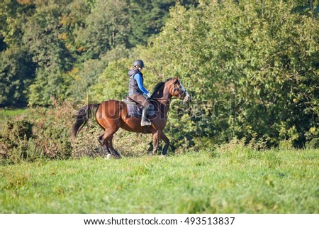 Young woman riding a horse in an open field woodland in the background.