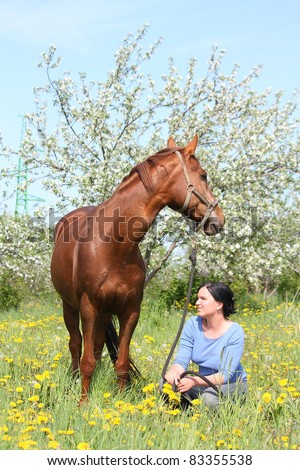 Young woman sitting on the field with flowers and chestnut horse standing near - stock photo