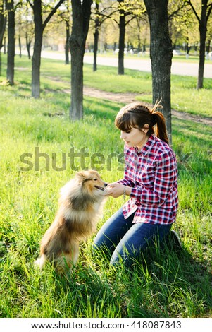 Young woman sitting with her dog sheltie on the grass and playing with the shetland sheepdog in the park